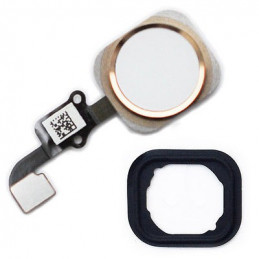 (OEM) iPhone 6 Plus Home Button Flexkabel + Home Button - Weiss / Gold