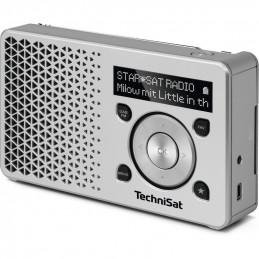 TechniSat DIGITRADIO 1, silber / silber